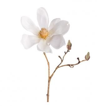 Leonardo Stellato Magnolie weiß/gold 30 cm