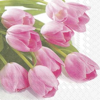 IHR Lunch-Servietten 33x33 cm Pink Spring