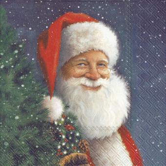 IHR Lunch-Servietten 33x33 cm Santa Is Waiting For Christmas