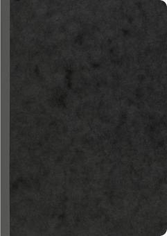 Brunnen Kladde A5 broschiert liniert 96Bl schwarz Fact!plus