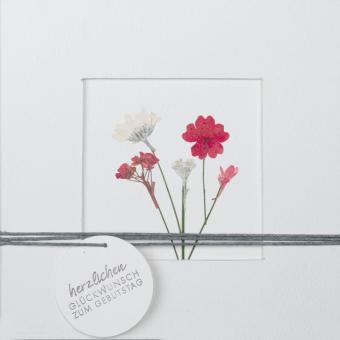 Räder Blumenpasspartout Karte Herzlichen Glückwunsch zum Geburtstag