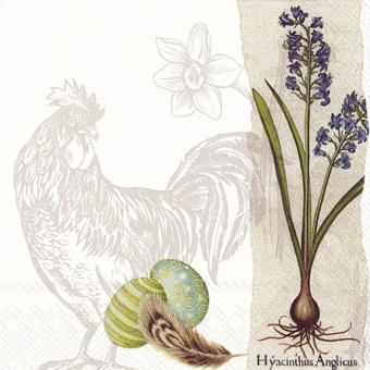 IHR Lunch-Servietten 33x33 cm Botanical Easter